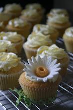Anya's Birthday Cupcakes