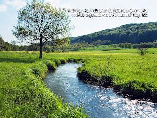 Blog de rosemeire : rosemeire25256, Salmos - 91.