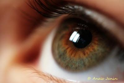 http://3.bp.blogspot.com/_gbxpGKFCi_Q/SQjrKyVFZfI/AAAAAAAAA2A/KpmjlLcTRV0/s400/T%27as+de+b%C3%B4+yeux++tu+sais+(08).JPG