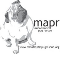 Mid-Atlantic Pug Rescue