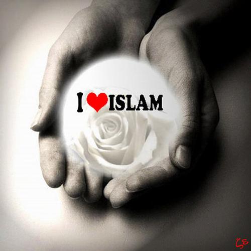 Kata Kata Cinta Islam