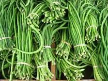 Cara meningkatkan hasil panen budidaya kacang panjang dengan pupuk organik nasa