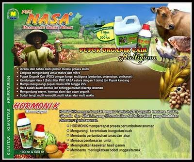 Brosur Natural Nusantara