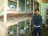 Bro Imran