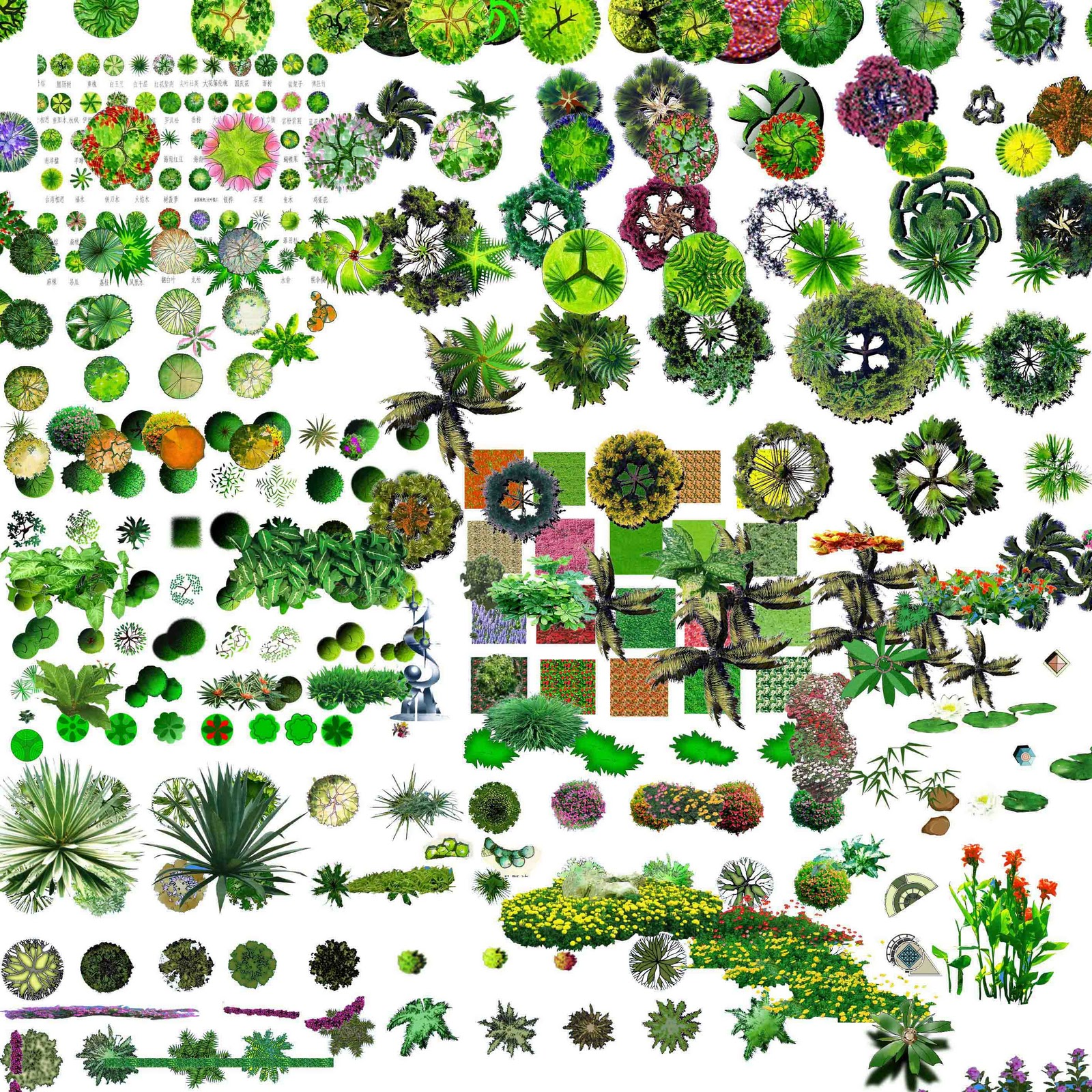 TREE%20PSD%2002.jpg