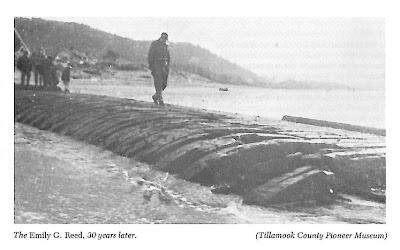 photo of the emily g.reed shipwreck in rockaway beach oregon
