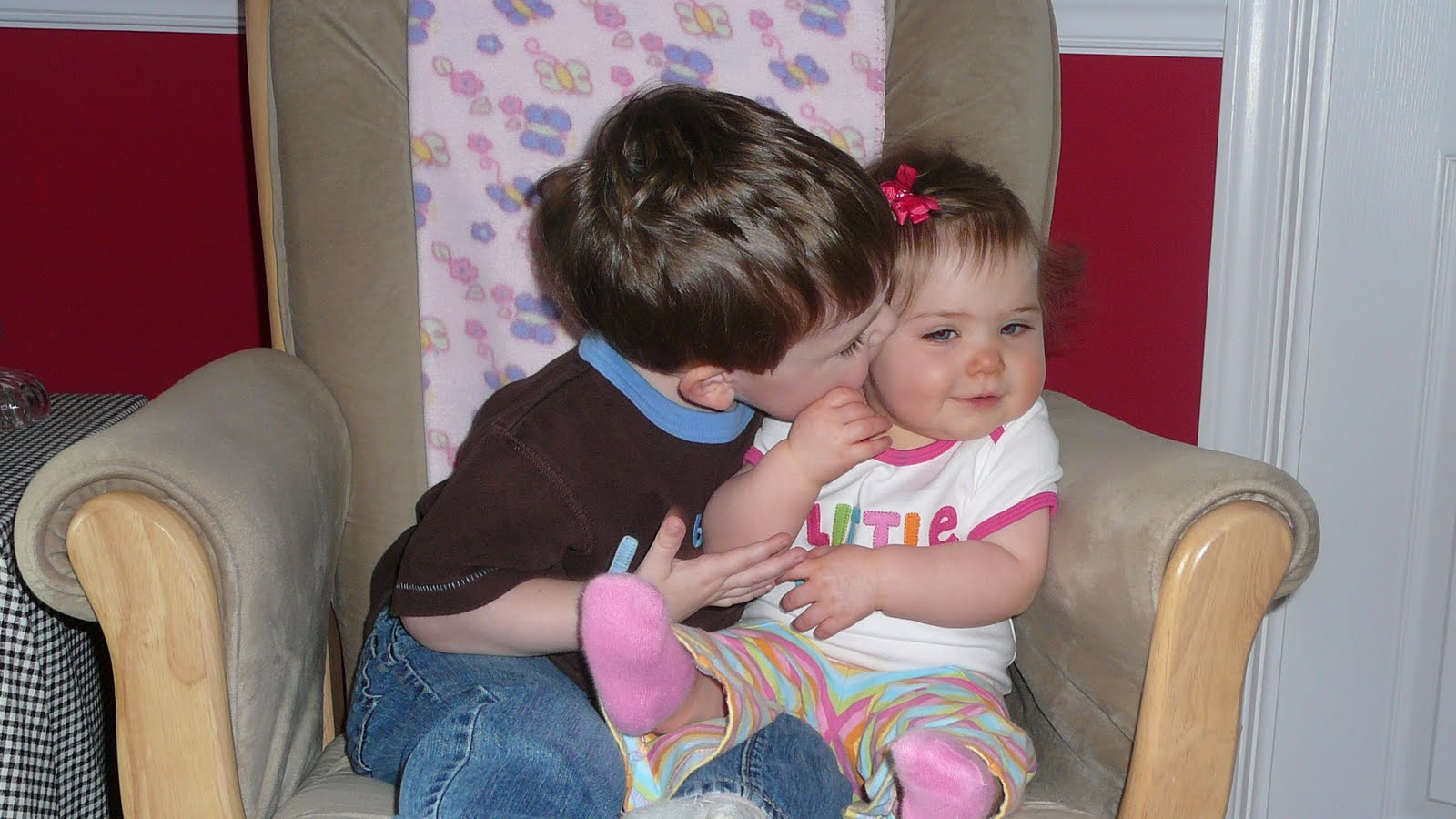 Big sister little photos Chapter 40: Plant Sensory Systems, Signals Responses - Practice