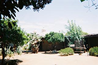 Avila Adobe garden