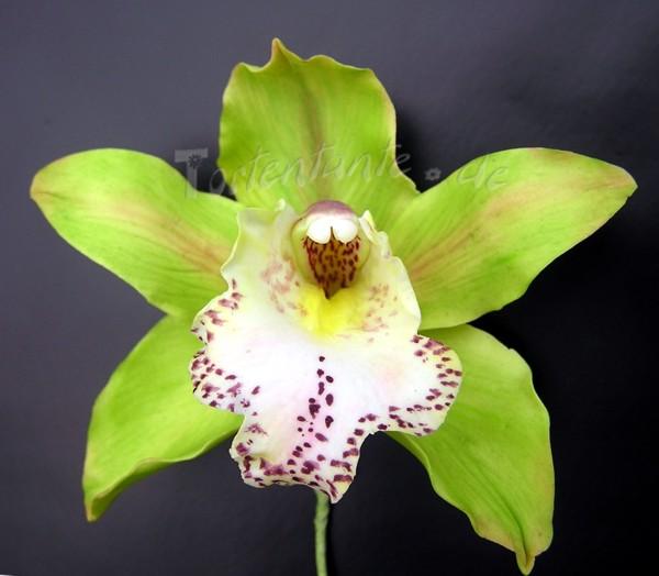 Grune Farbe Herstellen : Entschieden hatte ich mich dieses Mal für grüne Cymbidium Orchideen