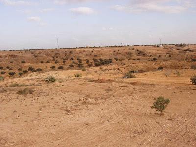 Africa Tunisia