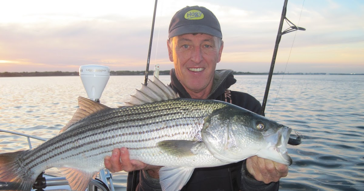Rhode island striped bass keepers from the boat for Striper fishing ri