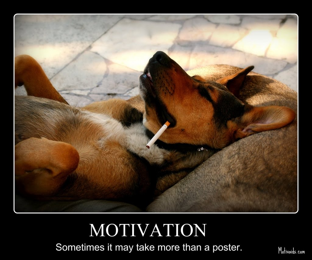 The Motivation Magician: Motivational Poster for the Day