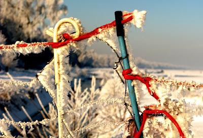 Het blijft winteren...