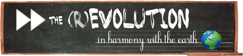 Forward the (R)evolution - in Harmony with the Earth