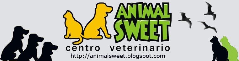 Animal Sweet