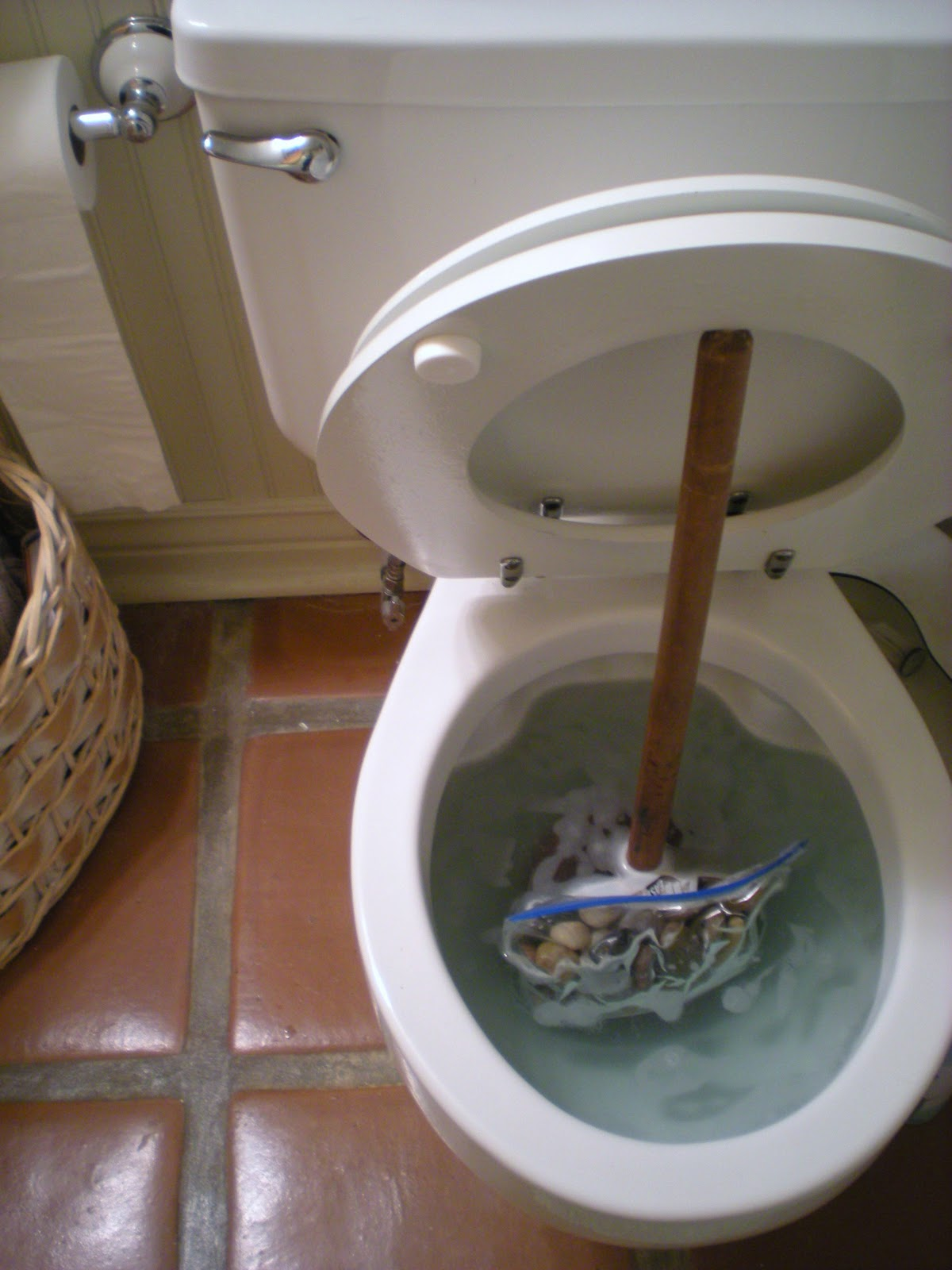 Great Scott Tip 27 Hard Water Ring In My Toilet Gross