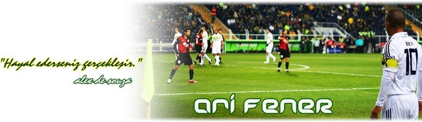 Ari FENER