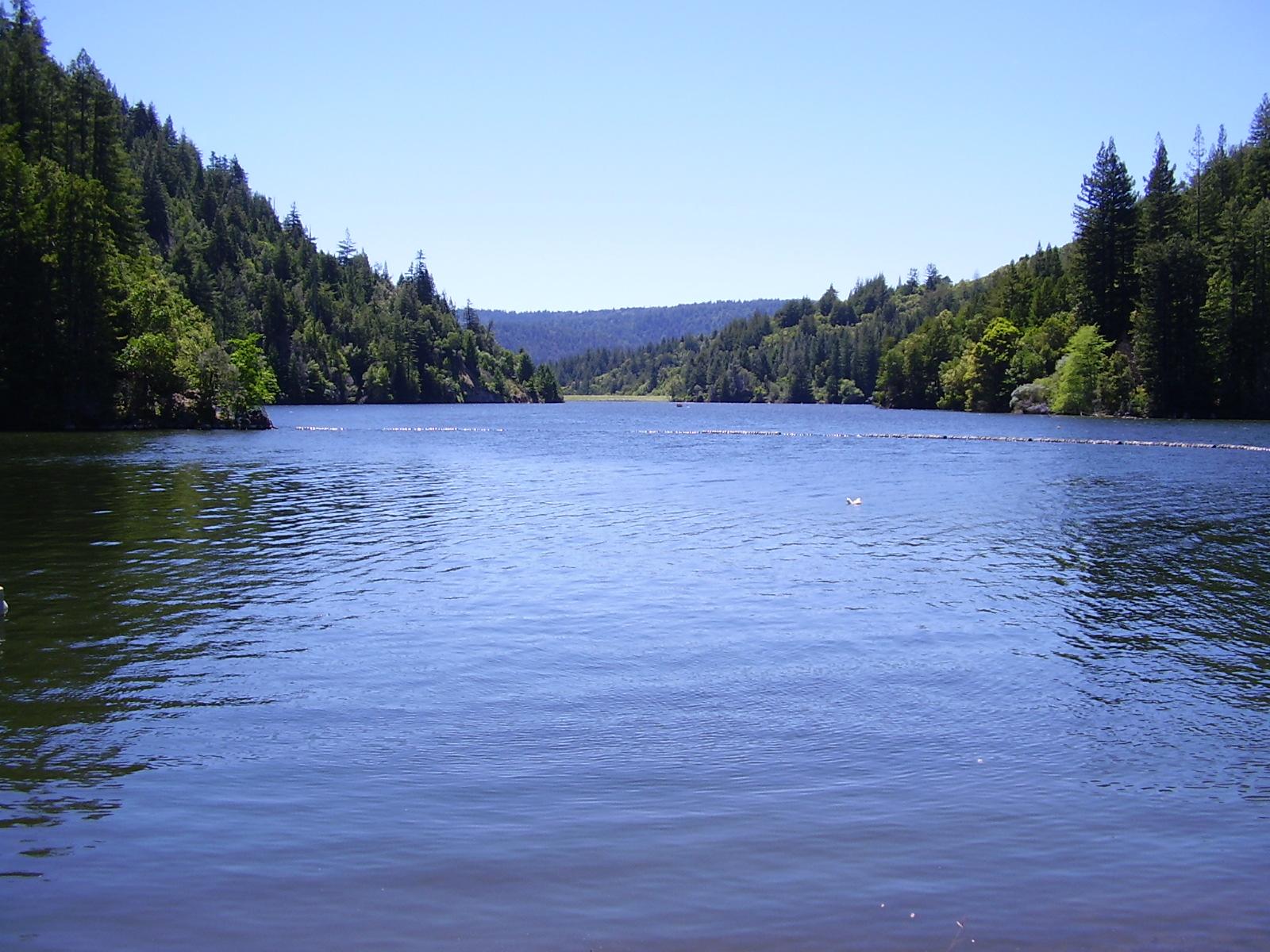 Loch lomond felton ca santa cruz county kristin leal for How much is a fishing license in california