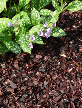 Mulch in Moderation