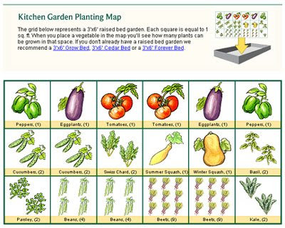 Planting map from the Kitchen Garden Planner