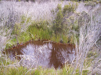 Crater-lake - Blowhole Valley, Tasmania - 2006