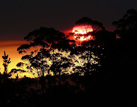 The setting sun from Vinces Saddle through regeneration burn smoke - 26 Mar 2007