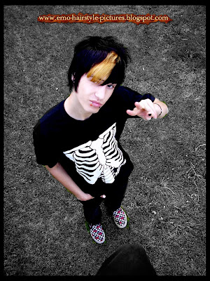 http://emo-hairstyle-pictures.blogspot.com/2009/09/emo-hair-cut-vans-boy.