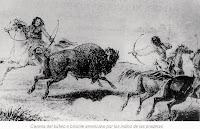 Caceria de bisonte o bufalo americano indios de las praderas