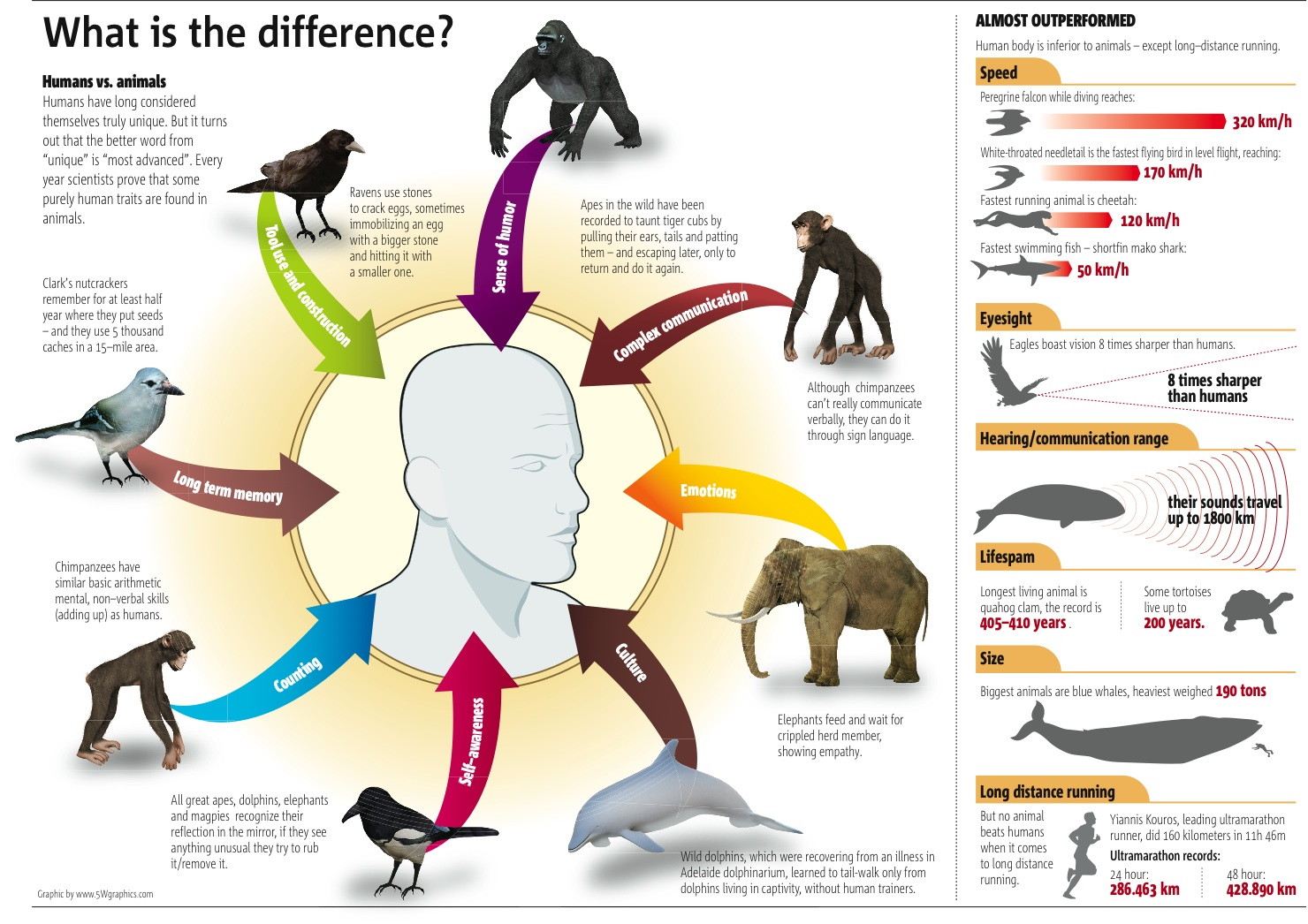 humans vs. animals essay Read the following essay by mark twain and show evidence of a close reading  by  truer one to be named the descent of man from the higher animals.