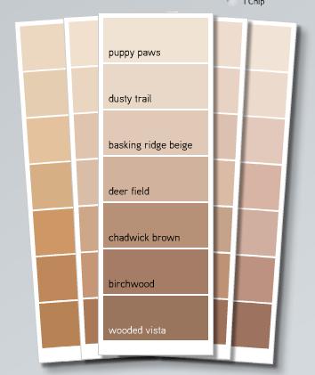 Mirando con lupa colores colour for Pintura beige claro