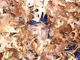 Leaf Boy