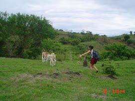 Persecución de cabras