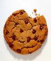 101 Gourmet Cookies- A cookie for everyone!