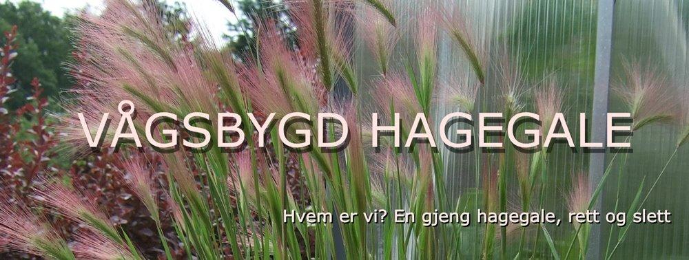 Vågsbygd Hagegale