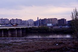 Puente de la Química, Zaragoza. Rastros de zorro debajo del puente