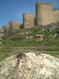 Nutria en el centro de Ávila