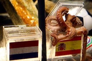 Polvo prevê Espanha campeã