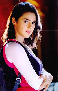 Preity Zinta-Fashion Artis Bollywood