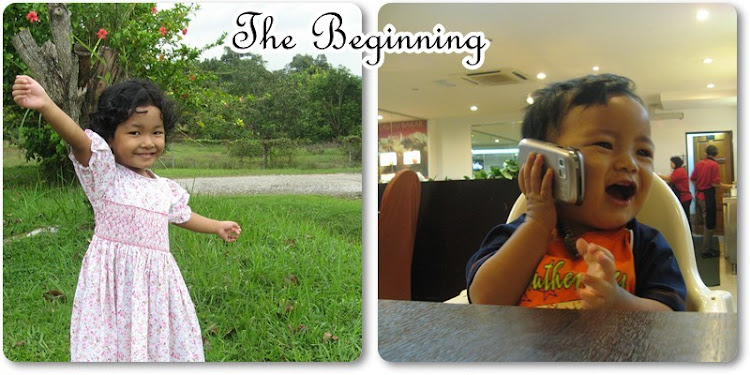 ~  The Beginning  ~