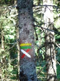 ヴェルコール地方自然公園のバリザージュは黄色と緑