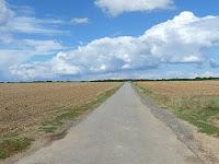 帰路の農地