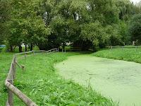 クルセルの沼
