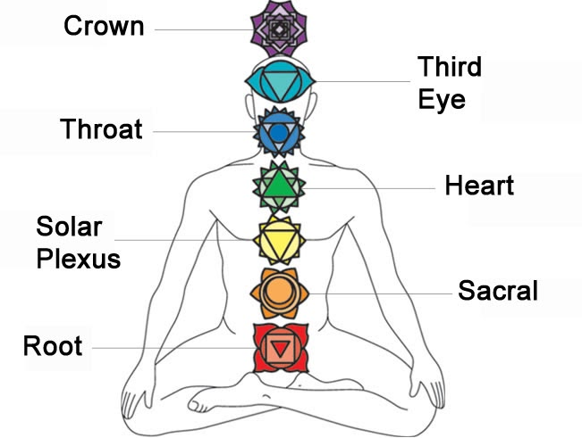 root chakra and its functions The root chakra is the first chakra, and it is located at the root of the spine, at the first three vertebrae the root chakra is associated with the color red and the earth element this chakra is called the root because it relates to a person's basic needs.