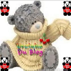 ursinhosinho blog♥
