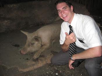 A Really BIG Pig