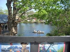 Spring along the Saugatucket River, Wakefield, RI