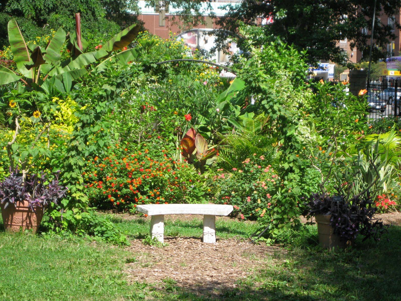Delicate Utility Queens Botanical Garden Project