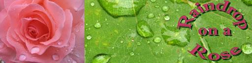 Raindrop on a Rose