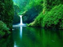 Poupe a água do planeta