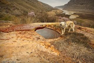 Ազատի ջրամբար Հանքային Ջուր